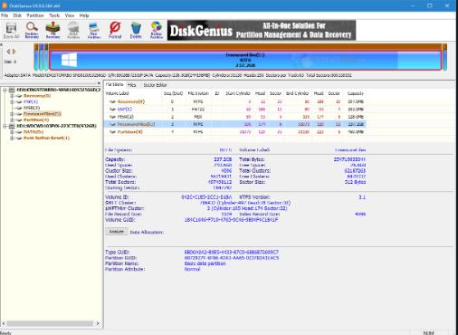 DiskGenius Professional 5.1.0.653 Download Free
