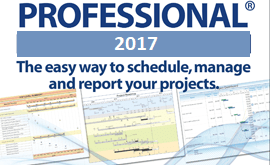 Milestones Professional 2017 Rev 2019 Download Free