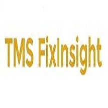 TMS FixInsight 2019 Download Free