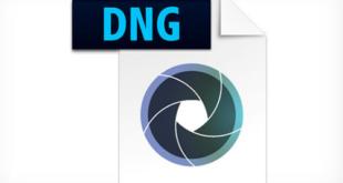 Adobe DNG Converter 11.3