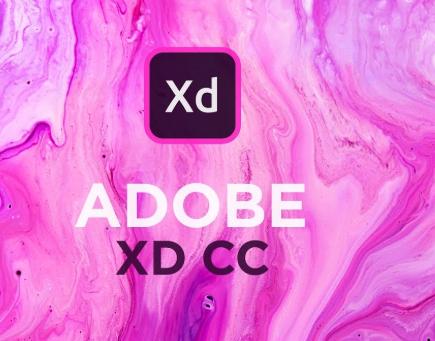 Adobe XD CC 2019 19