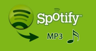 Spotify Music Downloader