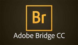 Adobe Bridge CC 2020 Free Download
