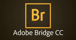 Adobe Bridge CC 2020 Free Download