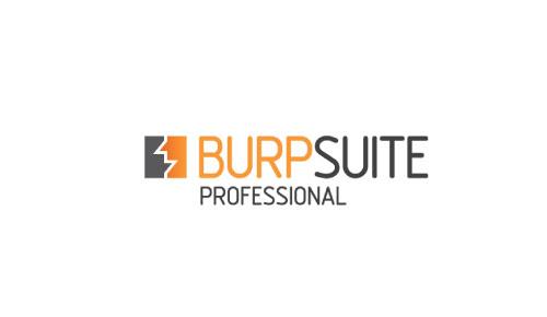 Burp Suite Professional Edition 2020 Free Download